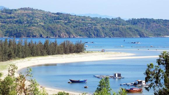 Bốn mùa xanh mát trên vịnh Vân Phong ảnh 1