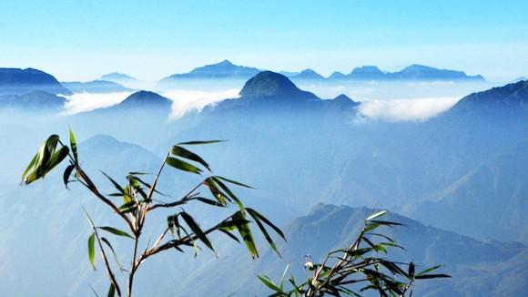 Mùa săn mây trên đỉnh Chênh Vênh ảnh 1