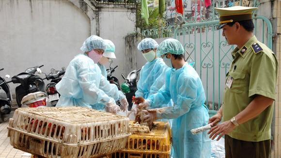 Một trường hợp tử vong do nhiễm cúm A/H5N1 ảnh 1