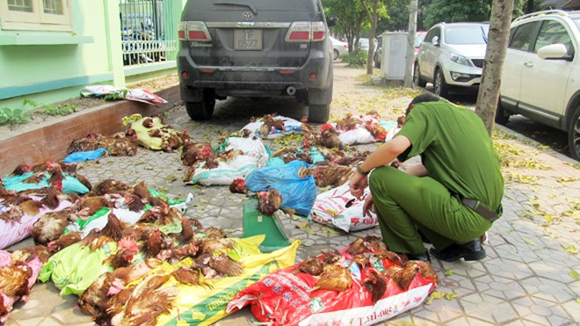 Ham rẻ, người tiêu dùng vẫn mua gà độc hại ảnh 1