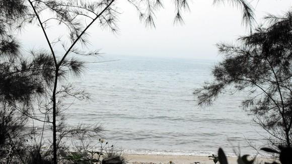 Thưởng ngoạn ở bãi biển nhiều kỷ lục ảnh 1