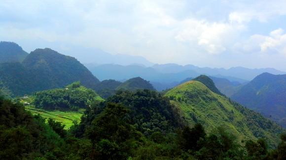 Vườn địa đàng lưng núi Pù Bin ảnh 2