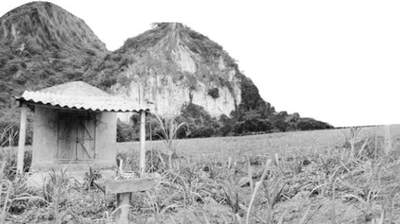 Sự thật núi thiêng xứ Mường ảnh 3