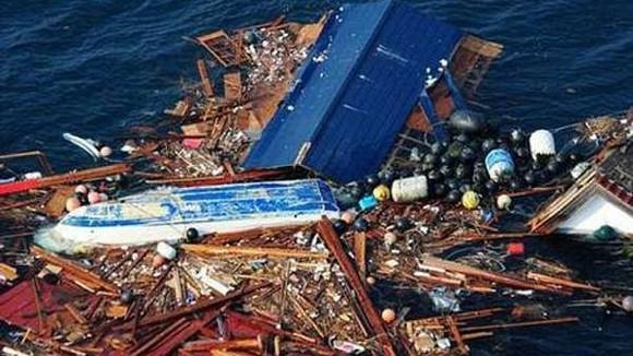 """""""Đảo rác thải"""" Nhật Bản trôi đến Mỹ ảnh 1"""