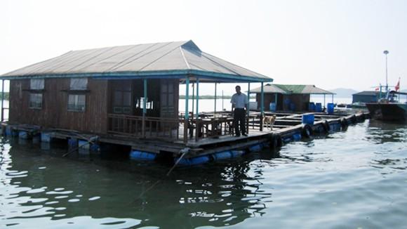 Làng nổi nơi cửa sông Cái Mắm ảnh 3