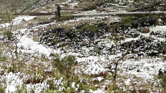 Mèo Vạc tuyết rơi trắng ảnh 1