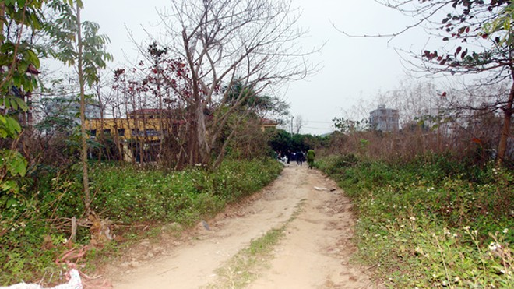 Xác minh thi thể nam giới tại vườn ươm thôn Phú Mỹ ảnh 1