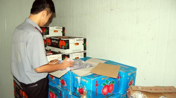 Hàng trăm tấn hoa quả Trung Quốc nhiễm thuốc vượt quy định ảnh 2