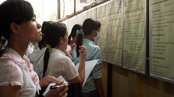 72.000 cử nhân thất nghiệp: Trách nhiệm từ nhiều phía ảnh 2
