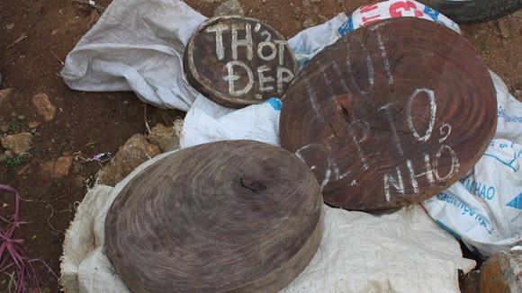 Nhức nhối nạn buôn thớt gỗ nghiến: Tiếp tay cho lâm tặc ảnh 3