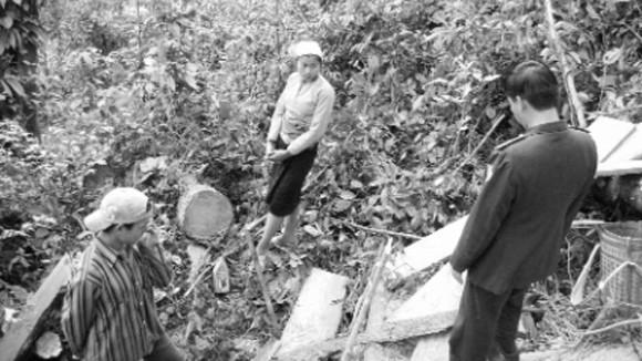 Chuyện những người giữ rừng Ngọc Sơn - Ngổ Luông: Rừng xanh thấm máu đỏ ảnh 1