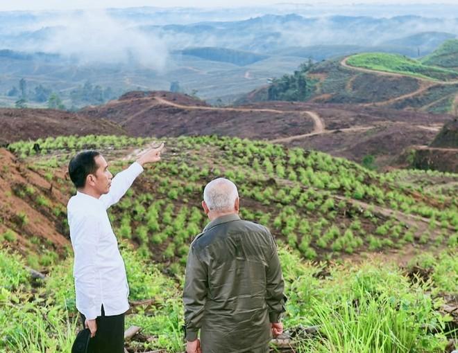 Sóng ngầm của thị trường nhà đất quanh vùng thủ đô mới của Indonesia ảnh 1