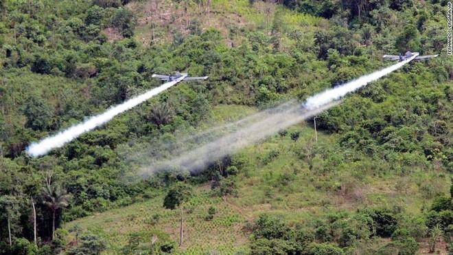 Nhiều rủi ro khi Colombia muốn phun hóa chất để ngăn chặn cocaine ảnh 1
