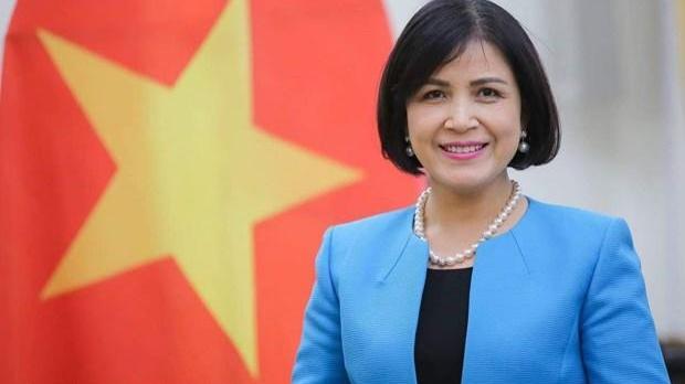 Việt Nam thúc đẩy ASEAN tham gia tích cực tại các tổ chức quốc tế ảnh 1