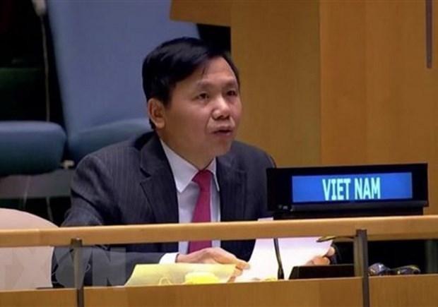 Việt Nam ủng hộ Chiến lược của Liên hợp quốc hỗ trợ khu vực Các hồ Lớn châu Phi ảnh 1
