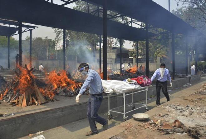 Ấn Độ đối mặt với những tuần kinh hoàng vì thảm họa Covid-19 ảnh 1