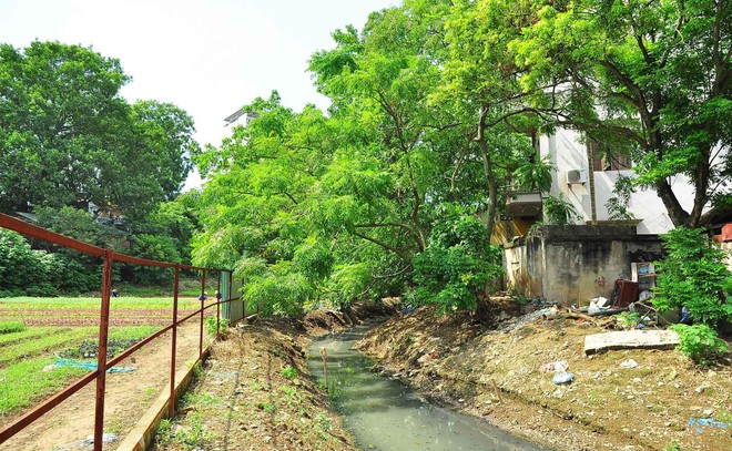 """Giữ lại dòng chảy lịch sử văn hóa các con sông định danh cho Hà Nội (4): Hà Nội còn gì nếu tất cả các dòng sông đều """"chết""""? ảnh 1"""