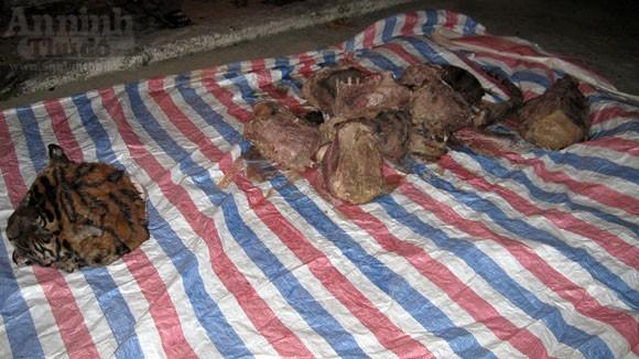 Cận cảnh vụ xẻ thịt hổ dã man trong bóng tối ảnh 7
