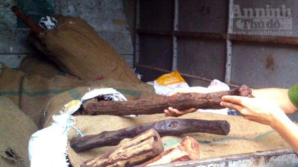 """Dân buôn mua """"nhầm"""" gỗ sưa... giả ảnh 6"""