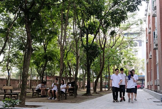 """""""Quỹ 1 triệu cây xanh cho Việt Nam"""": Lan toả tình yêu thiên nhiên, môi trường đến với học sinh ảnh 3"""