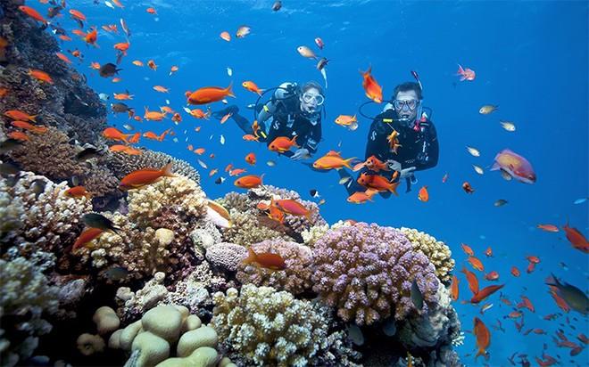 """Cần gì Maldives, Việt Nam cũng có """"đảo thiên đường"""" cực sang chảnh để """"đi trốn"""" cuối năm ảnh 5"""