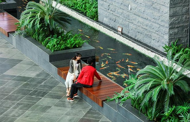 Cảng HKQT Vân Đồn được trao giải thưởng đặc biệt thế giới về thiết kế ngoại thất ảnh 3