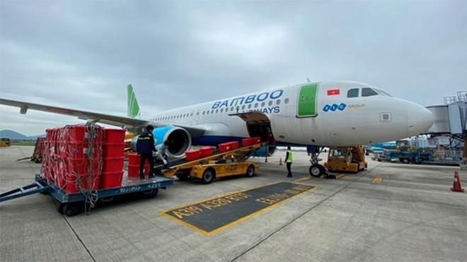 Bamboo Airways sẵn sàng vận chuyển vaccine Covid-19 ảnh 1