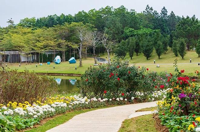 Kỳ nghỉ yêu thương tri ân phái đẹp nơi thiên đường xanh Đại Lải ảnh 1