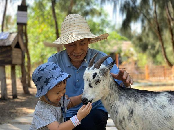 """""""Dân mạng"""" phấn khích với chú hổ Bengal đáng yêu """"hết nấc"""" tại FLC Zoo Safari Park Quy Nhon ảnh 9"""