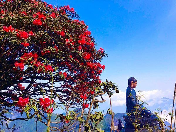 """Sun World Fansipan Legend- sức hút của """"điểm du lịch có thắng cảnh thiên nhiên hàng đầu thế giới"""" ảnh 3"""