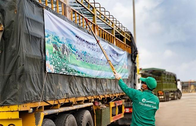 Vinamilk nhập khẩu hơn 2.100 bò sữa HF thuần chủng từ Mỹ về trang trại mới tại Quảng Ngãi ảnh 3