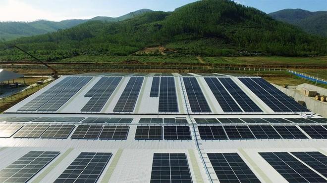 Vinamilk ra mắt hệ thống Trang trại sinh thái Vinamilk Green Farm ảnh 5