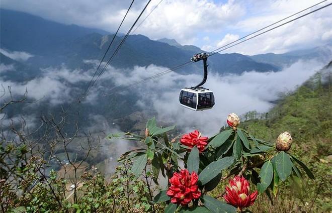 Hút khách về miền Tây Bắc hè này, Lào Cai tung loạt ưu đãi khủng tới 70% ảnh 1