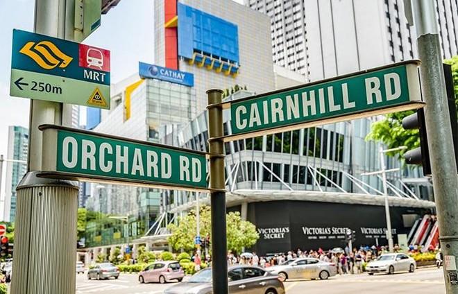 Những đại lộ làm nên tên tuổi các thành phố du lịch thế giới ảnh 4