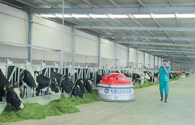 Vinamilk liên tục dẫn đầu ngành hàng sữa nước nhiều năm liền ảnh 4