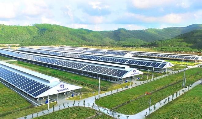 Vinamilk tập trung đầu tư các dự án lớn, chú trọng phát triển bền vững và quản trị doanh nghiệp ảnh 6