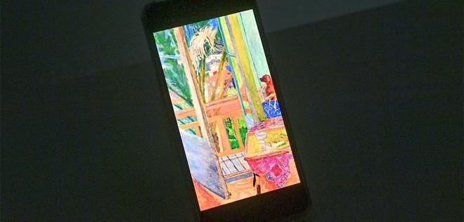 """""""Ngoài"""" và """"trong"""" ở triển lãm của Claude Monet và Pierre Bonnard tại VCCA ảnh 9"""