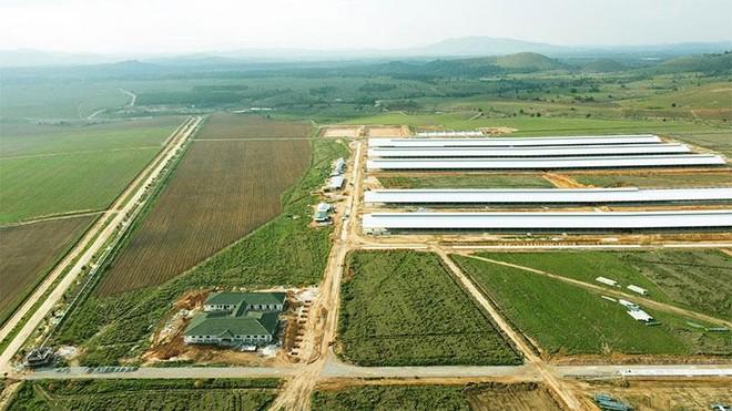"""Siêu dự án trang trại của Vinamilk tại Lào sẽ """"cho sữa"""" vào đầu năm 2022 ảnh 1"""