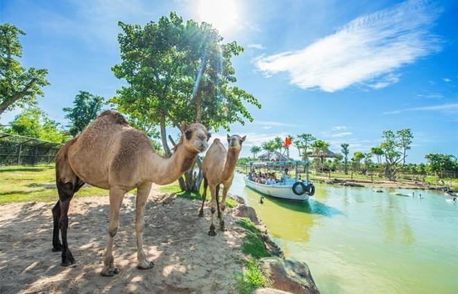 Top 3 điểm đến du lịch ven biển được yêu thích nhất Việt Nam ảnh 14