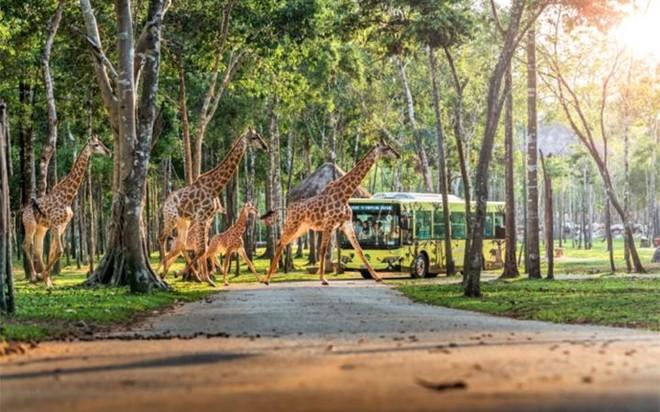 Top 3 điểm đến du lịch ven biển được yêu thích nhất Việt Nam ảnh 2