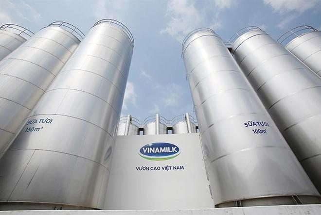 Vinamilk – đại diện duy nhất của Đông Nam Á trong 4 bảng xếp hạng toàn cầu về giá trị và sức mạnh thương hiệu ảnh 3