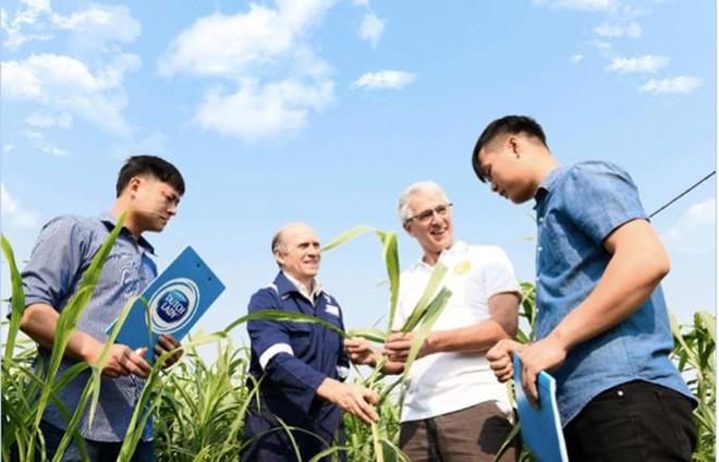 Tập đoàn FrieslandCampina ghi dấu ấn 150 năm với vị trí Top 3 trong sáng kiến tiếp cận dinh dưỡng toàn cầu ảnh 5