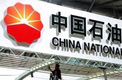 Trung Quốc: Sâu tham nhũng đục khoét nghiêm trọng ngành dầu khí ảnh 2