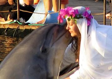 Những đám cưới kỳ quặc nhất thế giới ảnh 5