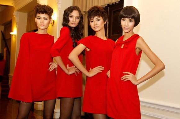 Vietnam's Next Top Model khởi động cuộc thi Top Model Online ảnh 1