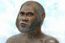 Phát hiện sinh vật mới giống loài người
