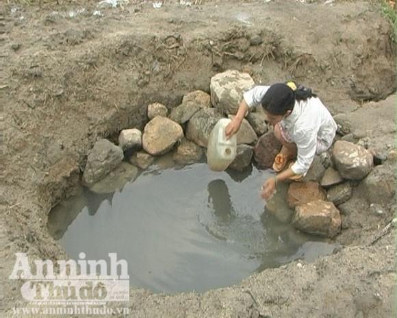 """""""Đại họa"""" vì thuốc diệt cỏ: Chết người vẫn phải dùng nước độc! ảnh 2"""