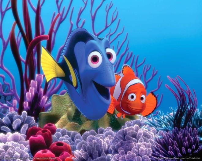 """""""Finding Nemo"""" phần tiếp theo sắp được ra mắt ảnh 1"""