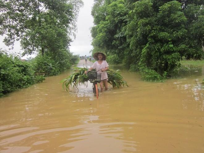 Mưa lớn, nhiều bản làng bị nhấn chìm, 8 người thương vong ảnh 5