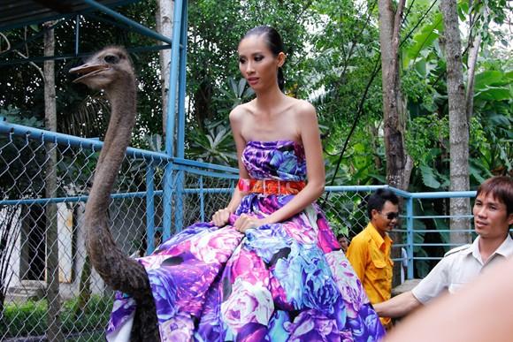 """Bị gọi là """"thảm họa thời trang"""", Kim Thoa chia tay Next top ảnh 5"""